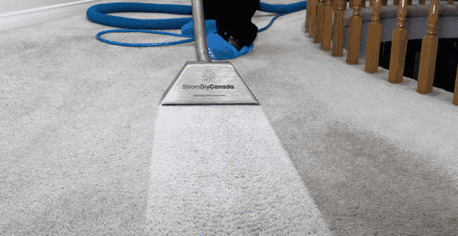 Deep Cleaning Carpet Tips